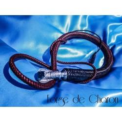 Les fouets de Charon